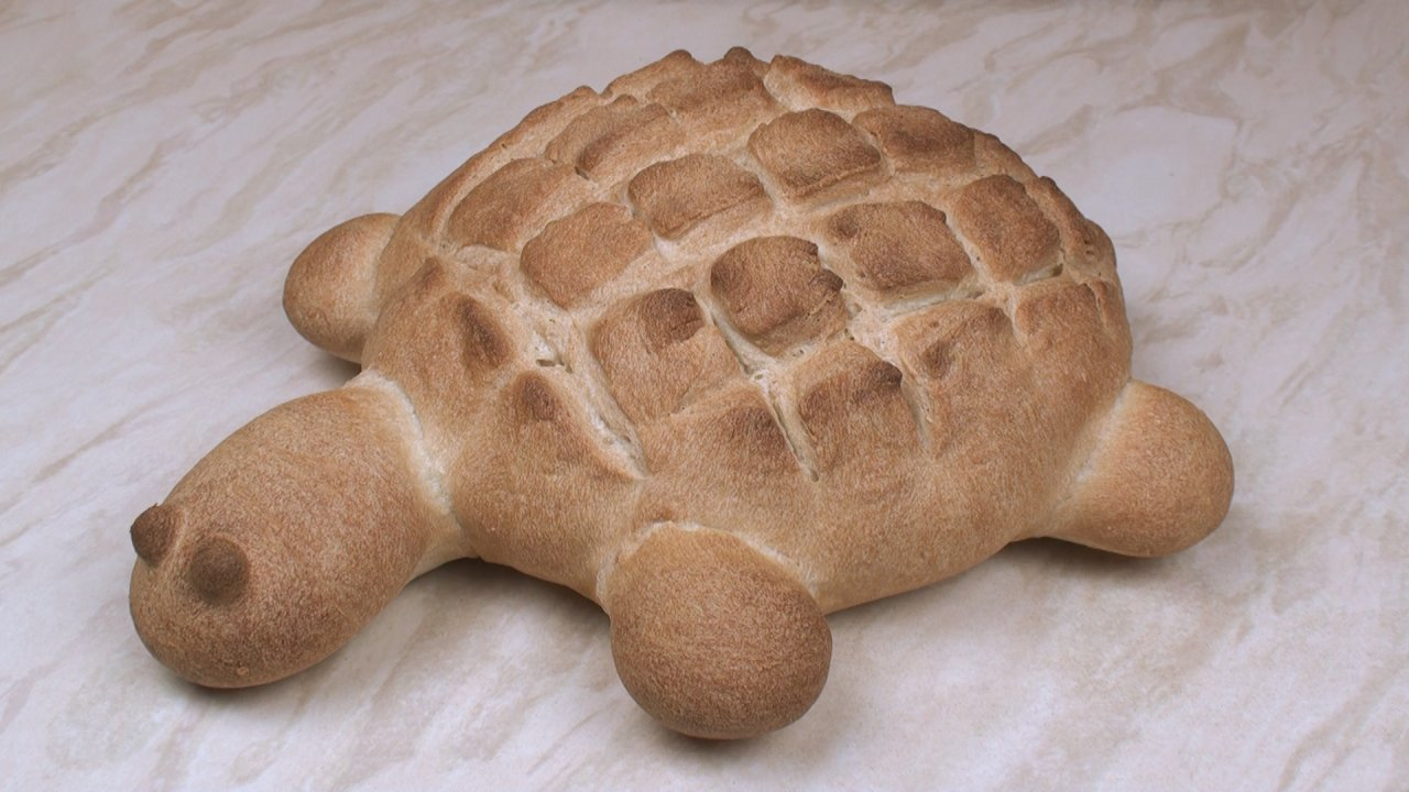 Turtle Bread | Cake Student